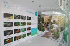 HB-Laser_Noor_Island_UAE_0012_web.jpg