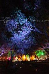 HB-Laser_Noor_Island_UAE_0019_web.jpg
