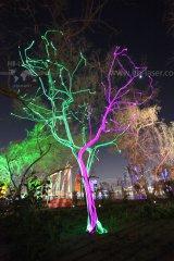 HB-Laser_Noor_Island_UAE_0027_web.jpg
